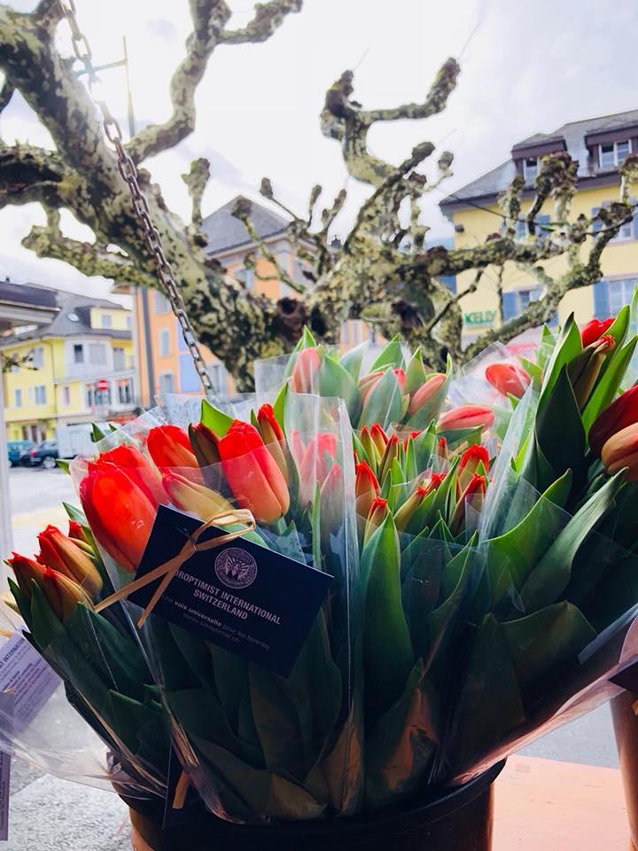 Tulipes pour une bonne cause